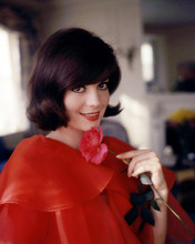 This is an image of Photograph & Poster of Natalie Wood 284426