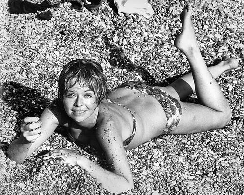 This is an image of Photograph & Poster of Susannah York 195041