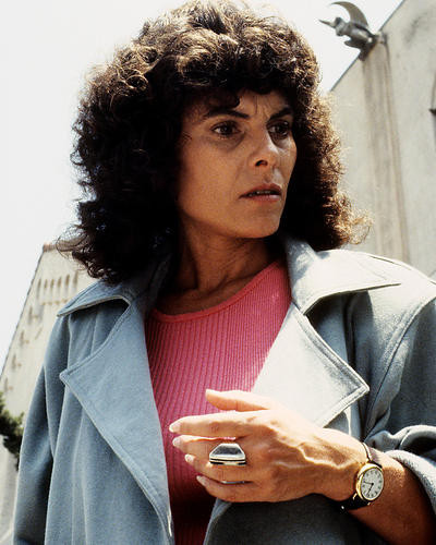 This is an image of Photograph & Poster of Adrienne Barbeau 284510