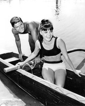 This is an image of Photograph & Poster of Gidget Tv 194850