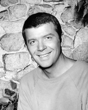 This is an image of Photograph & Poster of Robert Reed 194986