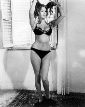 This is an image of Photograph & Poster of Sophia Loren 195110