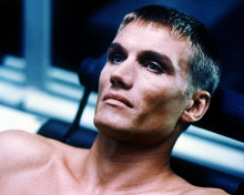 This is an image of Photograph & Poster of Dolph Lundgren 284612