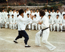 This is an image of Photograph & Poster of Enter the Dragon 284623