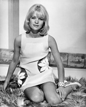 This is an image of Photograph & Poster of Judy Geeson 195144
