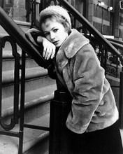 This is an image of Photograph & Poster of Piper Laurie 195147