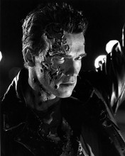 This is an image of Photograph & Poster of Arnold Schwarzenegger 195166