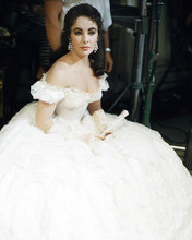 This is an image of Photograph & Poster of Elizabeth Taylor 284821