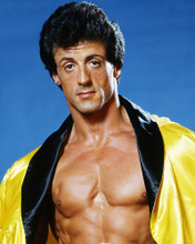 This is an image of Photograph & Poster of Sylvester Stallone 284832