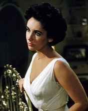 This is an image of Photograph & Poster of Elizabeth Taylor 284865