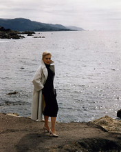 This is an image of Photograph & Poster of Kim Novak 284936