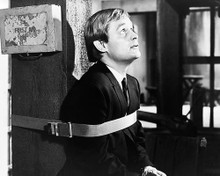 This is an image of Photograph & Poster of David McCallum 195411