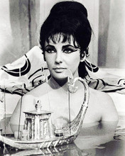 This is an image of Photograph & Poster of Elizabeth Taylor 195423