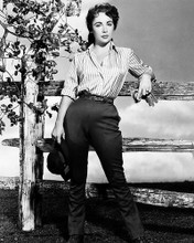 This is an image of Photograph & Poster of Elizabeth Taylor 195431