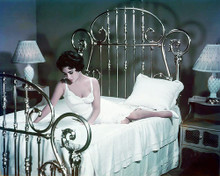 This is an image of Photograph & Poster of Elizabeth Taylor 284978