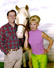 This is an image of Photograph & Poster of Mr.Ed 285174