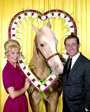 This is an image of Photograph & Poster of Mr.Ed 285236