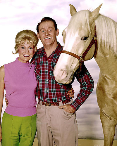 This is an image of Photograph & Poster of Mr.Ed 285281