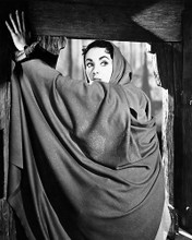 This is an image of Photograph & Poster of Elizabeth Taylor 195531