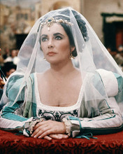 This is an image of Photograph & Poster of Elizabeth Taylor 285325