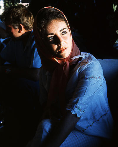 This is an image of Photograph & Poster of Elizabeth Taylor 285335