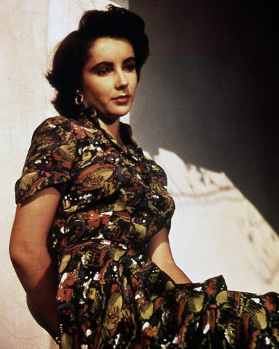 This is an image of Photograph & Poster of Elizabeth Taylor 285536
