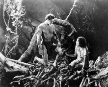 This is an image of Photograph & Poster of Tarzan the Apeman 199435