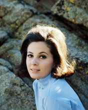 This is an image of Photograph & Poster of Barbara Parkins 290586