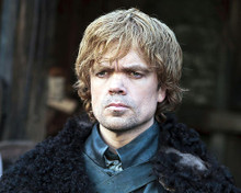 This is an image of Photograph & Poster of Peter Dinklage 290765