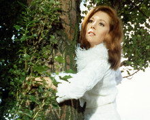 This is an image of Photograph & Poster of Diana Rigg 290811
