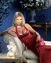 This is an image of Photograph & Poster of Shannon Tweed 290884