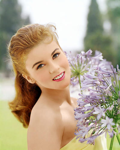 This is an image of Photograph & Poster of Ann-Margret 292332
