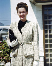 This is an image of Photograph & Poster of Rosalind Russell 292767