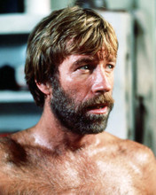 This is an image of Photograph & Poster of Chuck Norris 291139
