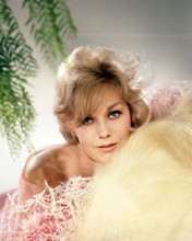 This is an image of Photograph & Poster of Kim Novak 291167