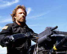 This is an image of Photograph & Poster of Chuck Norris 291219