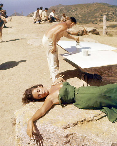 This is an image of Photograph & Poster of Elizabeth Taylor 291267