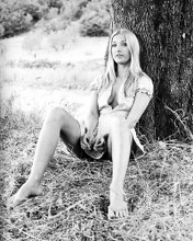 This is an image of Photograph & Poster of Barbara Bouchet 199484