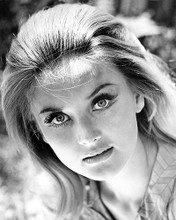 This is an image of Photograph & Poster of Barbara Bouchet 199485