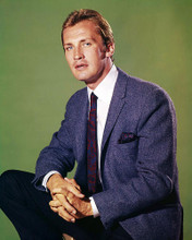 This is an image of Photograph & Poster of Roy Thinnes 291304