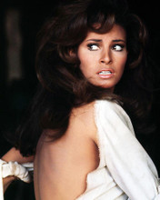 This is an image of Photograph & Poster of Raquel Welch 291336
