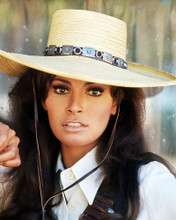 This is an image of Photograph & Poster of Raquel Welch 291363