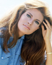 This is an image of Photograph & Poster of Raquel Welch 291375