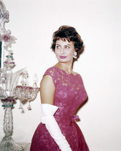This is an image of Photograph & Poster of Sophia Loren 291404