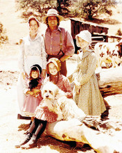 This is an image of Photograph & Poster of Little House on the Prairie 291788