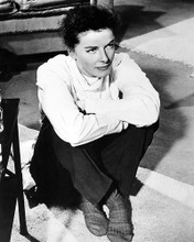 This is an image of Photograph & Poster of Katharine Hepburn 199747