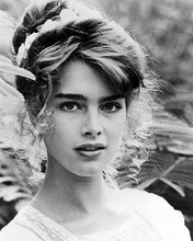 This is an image of Photograph & Poster of Brooke Shields 199758
