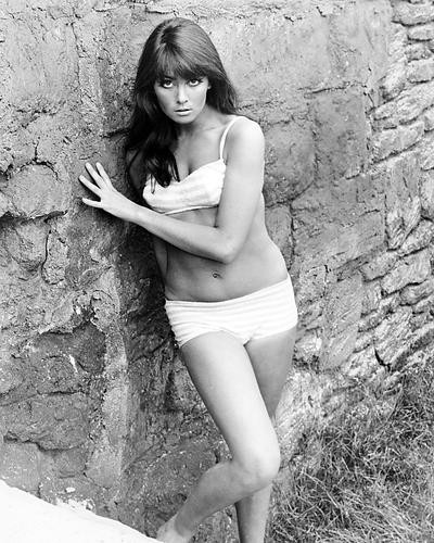 This is an image of Photograph & Poster of Caroline Munro 199785