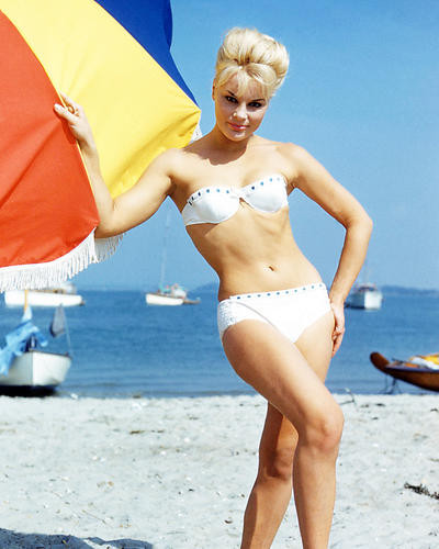 This is an image of Photograph & Poster of Elke Sommer 291840