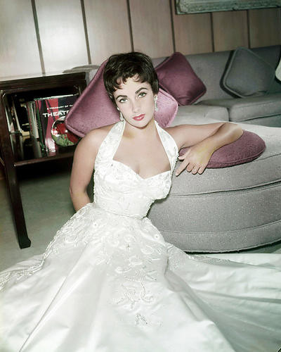This is an image of Photograph & Poster of Elizabeth Taylor 292034